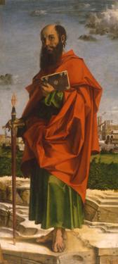 Saint Paul, 1482 by Bartolomeo Montagna