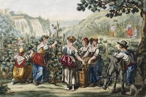 The Grape Harvest by Bartolomeo Pinelli