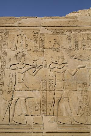 https://imgc.allpostersimages.com/img/posters/bas-reliefs-on-walls-temple-of-haroeris-and-sobek-kom-ombo-egypt-north-africa-africa_u-L-PWFLPK0.jpg?p=0