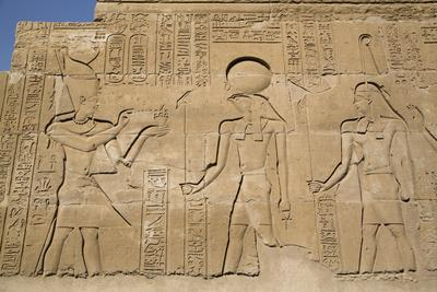 https://imgc.allpostersimages.com/img/posters/bas-reliefs-on-walls-temple-of-haroeris-and-sobek-kom-ombo-egypt-north-africa-africa_u-L-PWFSGO0.jpg?p=0