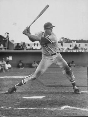 Baseball Player Frank Howard During Winter League Season