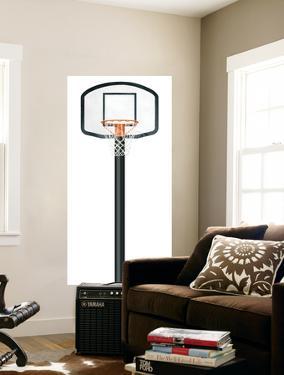 Basketball Hoop Mural Art Print Poster