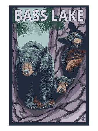 https://imgc.allpostersimages.com/img/posters/bass-lake-california-bears-in-tree-c-2009_u-L-Q1GOU1H0.jpg?p=0