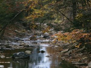 Autumnal View of This Picturesque River by Bates Littlehales
