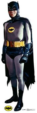 Batman - 1969 TV Series - Batman And Robin Lifesize Standup