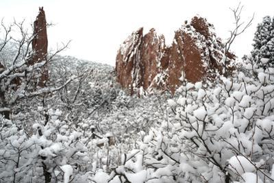 Winter at the Garden of the Gods by bcoulter