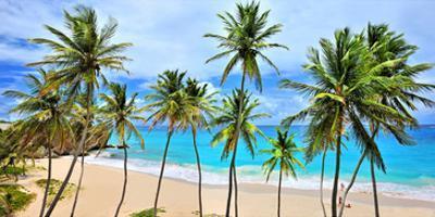 Beach at Bottom Bay, St. Philip, Barbados, Caribbean