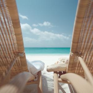 Beach Chairs on a Beach