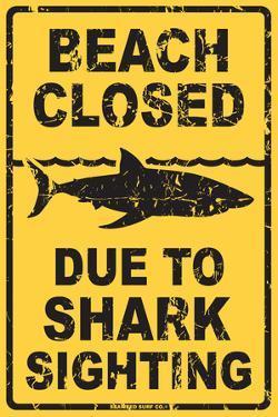 Beach Closed Due to Shark Sighting