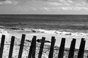 Beach Dunes Fence in Hamptons Black White Plastic Sign