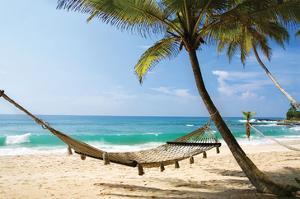 Beach Hammock & Tropic Sea