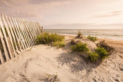 https://imgc.allpostersimages.com/img/posters/beach-near-kitty-hawk-outer-banks-north-carolina-united-states-of-america-north-america_u-L-PXXX1H0.jpg?p=0