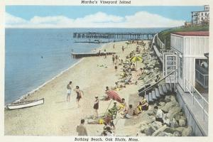 Beach, Oak Bluffs, Martha's Vineyard