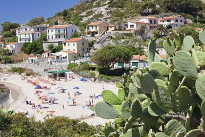 https://imgc.allpostersimages.com/img/posters/beach-of-seccheto-island-of-elba-livorno-province-tuscany-italy_u-L-PWFRH00.jpg?p=0