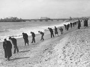 Beachcombers Searching Brighton Beach for Treasure