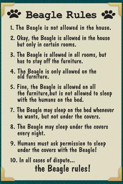 Beagle House Rules
