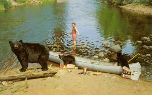 Bear Family in Canoe, Kid Screaming