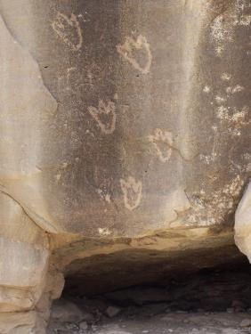 Bear Paw Petroglyphs of the Anasazi Ancestral Puebloans, Canyon De Chelly, Arizona