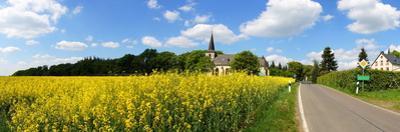 Church and Rape Field in Buchholz in the Eifel