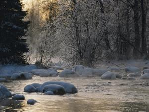 Beautiful View of a Stream Finding its Way Through Snowy Trees and Rocks in the Taiga