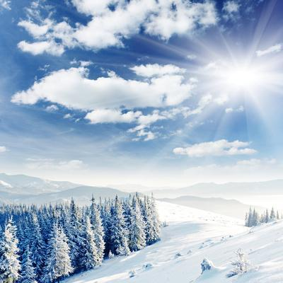 https://imgc.allpostersimages.com/img/posters/beautiful-winter-landscape-with-snow-covered-trees_u-L-Q103A580.jpg?artPerspective=n
