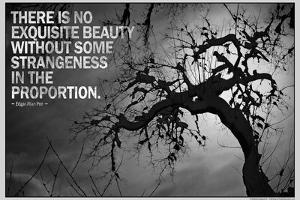 Beauty and Strangeness Edgar Allan Poe Poster