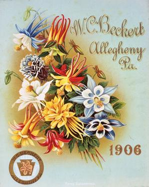 Beckert Seed Allegheny PA 1906