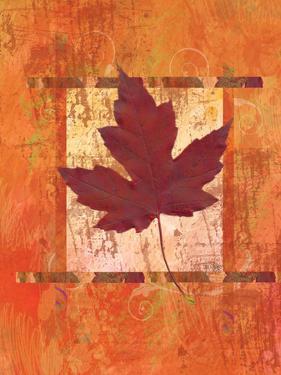 Autumn Leaf by Bee Sturgis