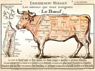 beef diagram_u L F6BR8U0?src=gp&w=275&h=250 affordable meat posters for sale at allposters com