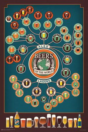 Beers of the World Flow Chart
