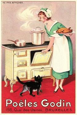 Belgian Cook and Cat
