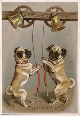 Bell Ringing Pug Dogs