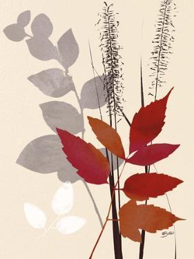 October Leaf 2 by Bella Dos Santos