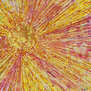 Sunburst by Ben Bonart