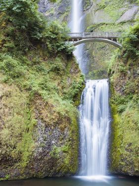 Water Cascades Down Multnomah Falls, Oregon by Ben Coffman