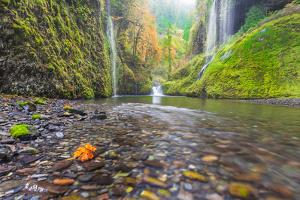 Water Pours from the Walls of Eagle Creek Canyon after a Recent Rainstorm, in Oregon by Ben Coffman
