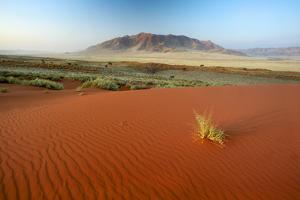 Namib Desert, Namibia by Ben Cranke