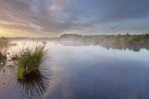 Ballynahone Bog at Dawn, County Antrim, Northern Ireland, UK, June 2011 by Ben Hall