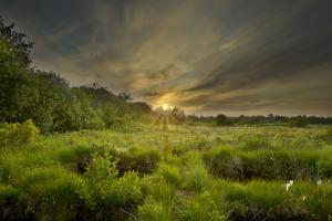 Montiagh's Moss at Dusk, County Antrim, Northern Ireland, UK, June 2011 by Ben Hall