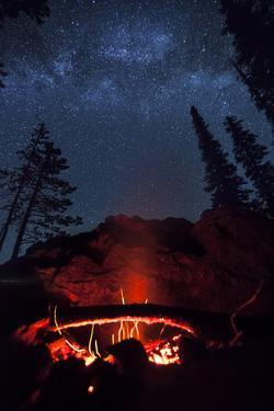 A Fire Burns under a Canopy of Stars and Evergreens in the Seven Devil Mountains in Central Idaho by Ben Herndon