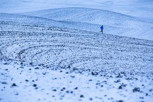 James Engerbretson Goes For A Cold Early-Winter Run On A Seasonally-Closed Farm Road, Moscow, Idaho by Ben Herndon