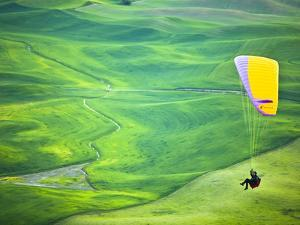 Paragliding Among the Picturesque, Wheat Covered Hills of the Palouse in Eastern Washington at Dusk by Ben Herndon