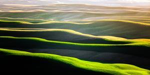 The Green Rolling Hills of the Palouse in Spring by Ben Herndon