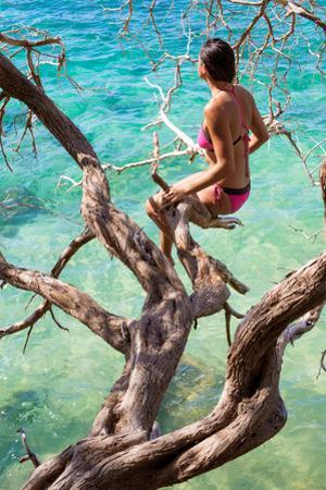 A young woman sitting on the branch of a tree at Hookipa beach. by Ben Horton