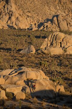 Joshua Tree National Park, California: A Climber on an Unnamed Crack with the Shadow of a Tree by Ben Horton