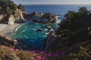 Mcway Waterfall and Pink Flowers Overlook a Cove Near Big Sur by Ben Horton