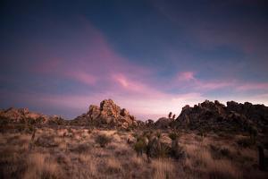 Sunset in Joshua Tree National Park by Ben Horton