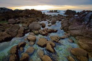 Tide Pools at Sunset in Monterey, California by Ben Horton