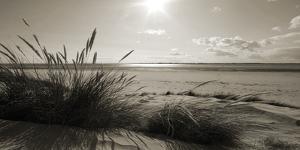 Rolling Dunes I by Ben James