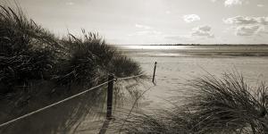 Rolling Dunes III by Ben James